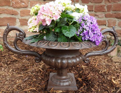 Französische Vase mit Ohren
