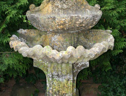 Fontaine Muschel